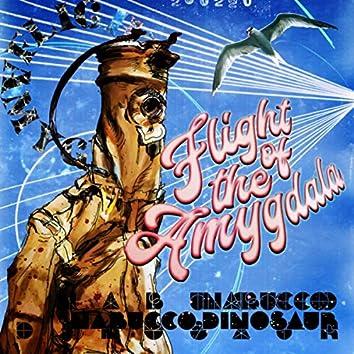 Flight of the Amygdala