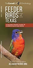 Feeder Birds of Texas: A Folding Pocket Guide to Common Backyard Birds (Wildlife and Nature Identification)