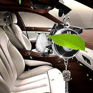 Shenwinfy Car Rearview Mirror Perfume Pendant for BMW Accessory, Car Rearview Mirror Diamond Perfume Air Freshener Hanging Ornament