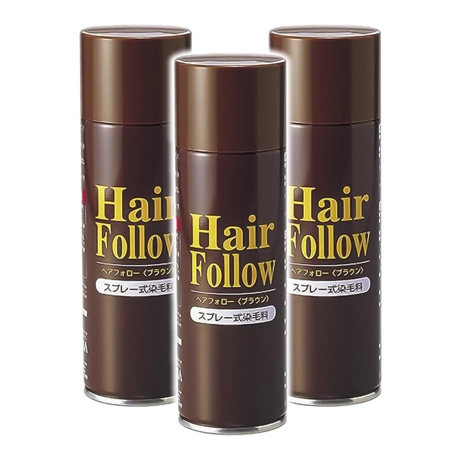 類推バーベキュー下着薄毛スプレー 3本セット ヘアフォロー HairFollow ブラウン 150g
