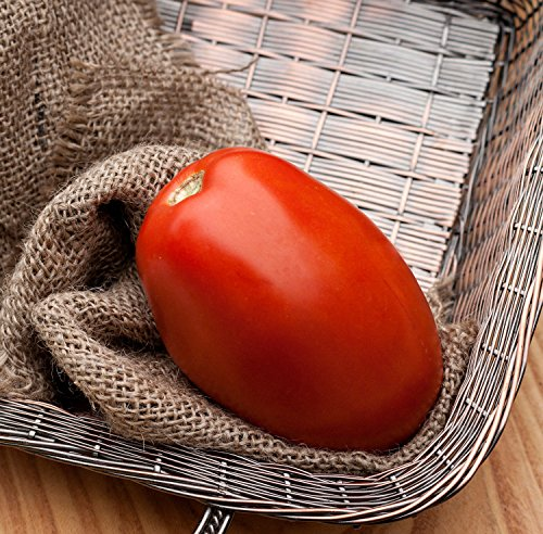 PLAT FIRM Germination Les graines: Romeo Roma énorme Pâte italienne Tomate Heirloom prime Seed Packet