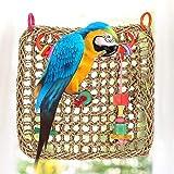 Delaman Stuoia del Pappagallo, Giocattolo Dell'Oscillazione Masticazione Dell'Uccello, Stuoia Rete d'Attaccatura Divertimento Esercitazione Seagrass