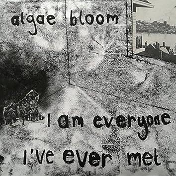 I Am Everyone I've Ever Met