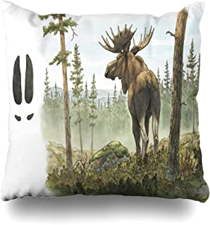 Best elk moose footprint Reviews