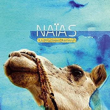 Le douzième chameau
