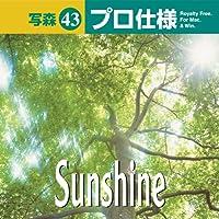 写森プロ仕様 Vol.43 Sunshine