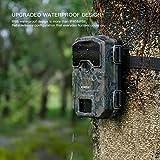Zoom IMG-2 apeman camera da caccia 20mp