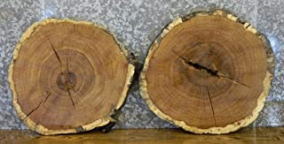 2- Rustic White Oak Live Edge Round Cut End/Side Table Top Slabs T: 1 3/8''D: 23 3/4'' - 6562-6563