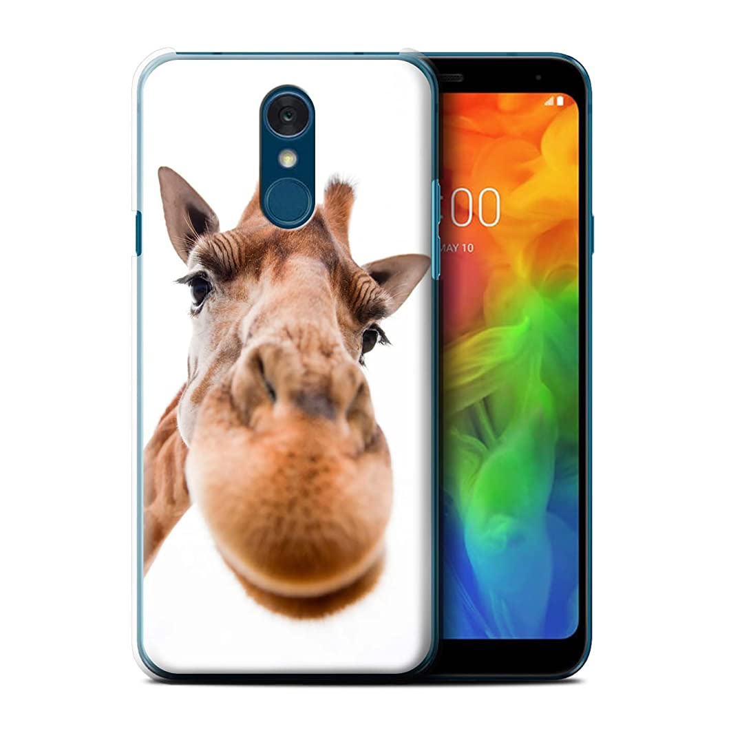 STUFF4 Phone Case/Cover for LG Q7/Q7+/Q7a / Closeup Giraffe Design/Funny Animals Collection
