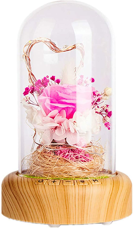 HJJH Led Rosa Bottle Lampe mit Blautooth-Lautsprecher Blau Rosa Night Light, konservierte Rosa in Glaskuppel, Dekor für Valentinstag Jubiläum, Geburtstag,rot B07MGV2B82 | Für Ihre Wahl