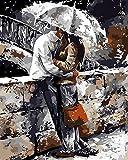 WONZOM DIY Dipinto ad Olio Dipingere con i Numeri Kit per Adulti Set Completo di Vernice acrilica e 3 pennelli Bacio Romantico 16 * 20 Pollici Senza Cornice