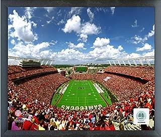 Williams-Brice Stadium South Carolina Gamecocks Action Photo (Size: 12
