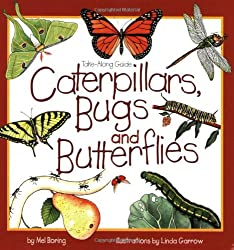 Caterpillars, Bugs, and Butterflies Book for Children