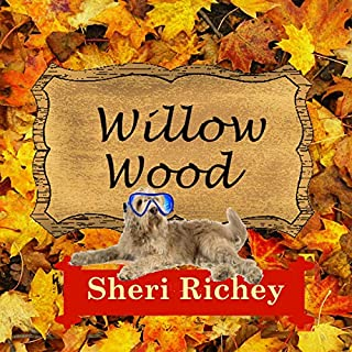 Willow Wood: A Sweet Small Town Romance audiobook cover art