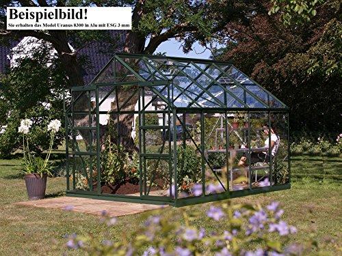 Gartenwelt Riegelsberger Gewächshaus Uranus - Ausführung: 8300 ESG 3 mm Alu, Fläche: ca. 8,3 m², mit 4 Dachfenster, Sockel: 2,54 x 3,17 m