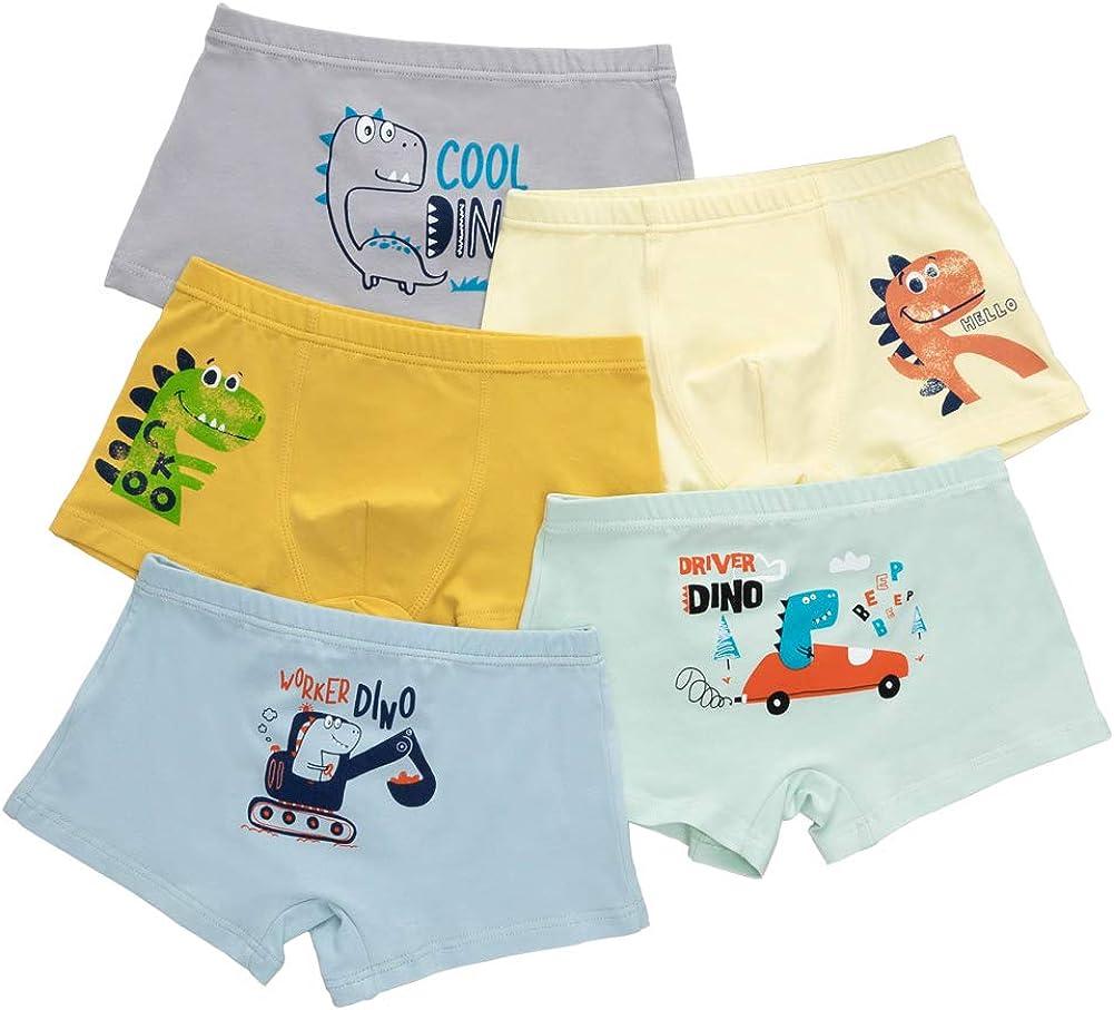 Core Pretty Boys Underwear Kids Cotton Boxer Briefs Dinosaur Training Boyshorts for Toddler Size 3-12 Years (Pack of 5)