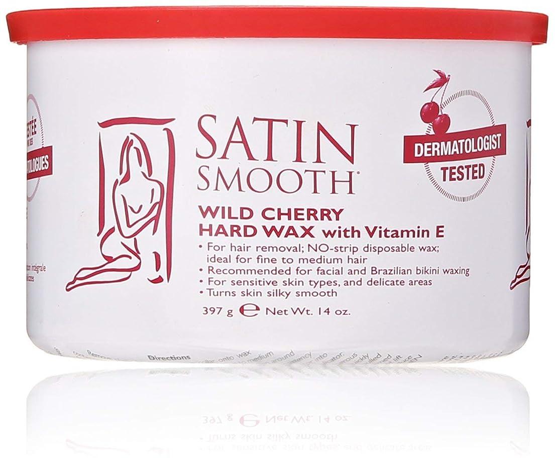 粘液偏見ピラミッドSatin Smooth Wild Cherry Hard Wax with Vitamin E, 14 oz. 141[並行輸入]