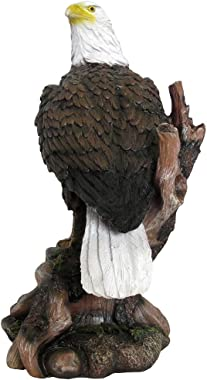 American Bald Eagle Statue in Wild Bird Sculptures & Figurines As Patriotic Decorations or Office and Rustic Lodge Home Decor