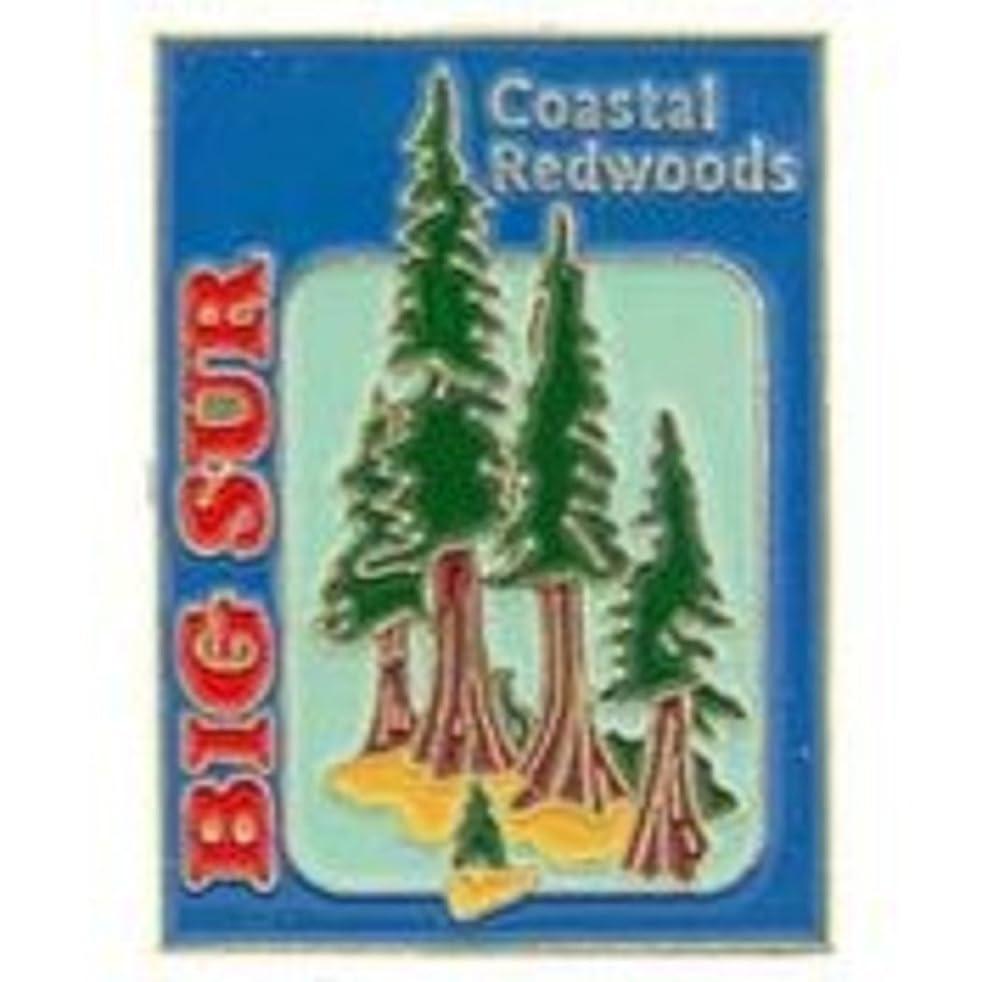 EagleEmblems P00147 PIN-CA,Big SUR,Redwoods (1'')