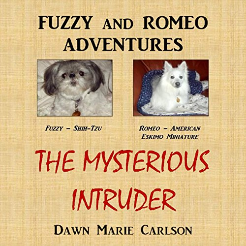 The Mysterious Intruder audiobook cover art