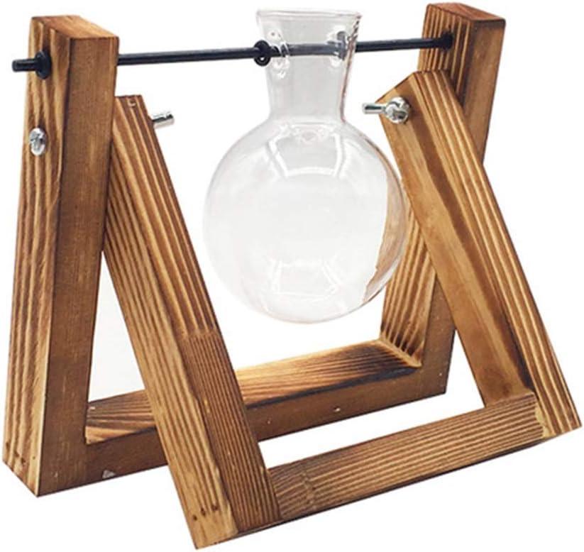 Plant Terrarium Wooden Stand Desktop New life Planter Vase Genuine Free Shipping Glass Bulb wi