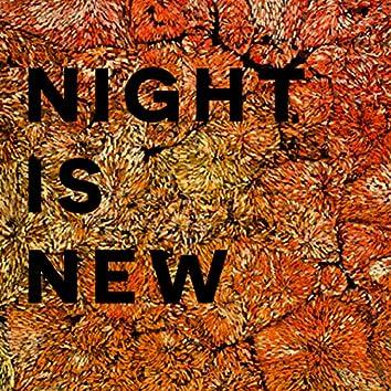Night Is New