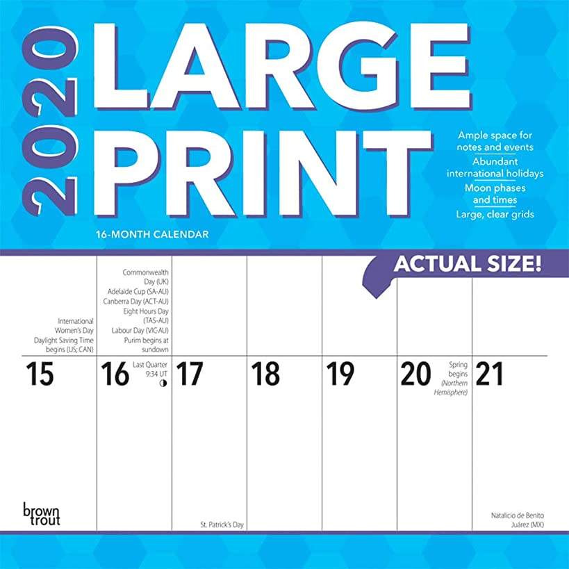 Large Print 2020 12 x 12 Inch Monthly Square Wall Calendar, Easy to See with Large Font