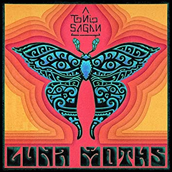 Luna Moths (feat. Michael Wilbur & Erick t Coomes)
