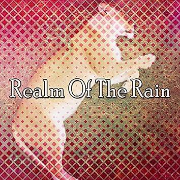 Realm Of The Rain