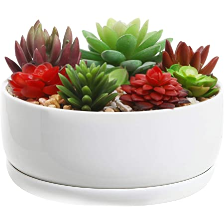 Amazon Com Mygift 6 Inch Decorative White Ceramic Succulent Flower Planter Pot With Round Tray Garden Outdoor