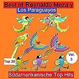 Viva Paraguay Medley: Tupasy el Campo / Musikeada Jazmin Gueype - Amoite Ararapope / Carai German - Iha Arriero Mi Che Reko Pe / Mariposa para Mi (Live)