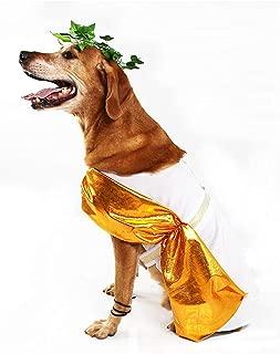 Midlee Toga Dog Costume