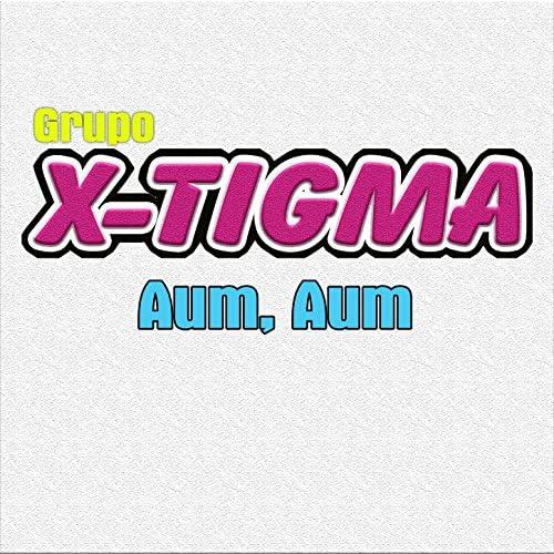 Grupo X-Tigma