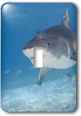 Double Toggle Switch Fiji 3D Rose LSP/_228483/_2 Bull Shark Viti Levu Benga Lagoon Carcharhinus leucas