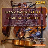 Gebel: Double String Quintet in D Minor - Schuberth: String Octet in E Major