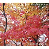 京都高級料亭に流れる琴のように(癒し琴BGM京の琴)京都に合わせた琴の音色と癒しの世界!業務用BGM