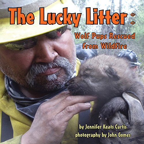 The Lucky Litter: Wolf Pups Rescued from Wildfire audiobook cover art