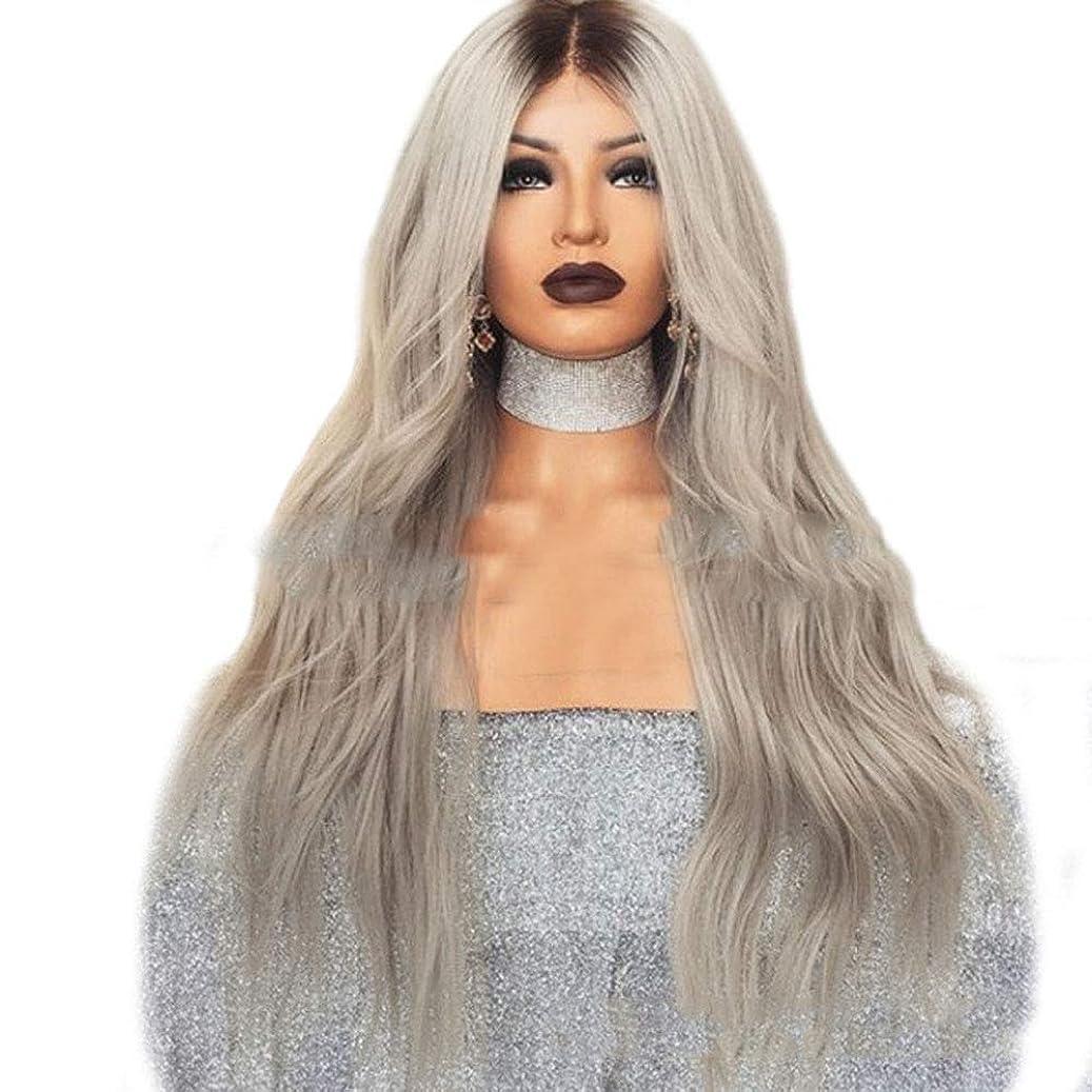 手段ペースたぶんYrattary ブラウングレーマイクロロール長い巻き毛の混合色グラデーション長い髪の女性の大きな波かつら合成毛髪のレースのかつらロールプレイングかつら (色 : Photo Color, サイズ : 65cm)