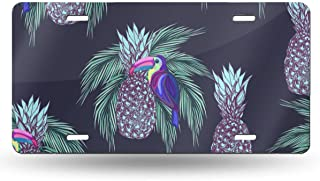 DGbanma Custom License Plate ,Aluminum Metal Front License Plate Car Tag for Women Men 6X12 Inch Oucans and Pineapples On Dark Background