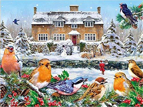 5D DIY pintura de diamantes punto de cruz pájaro bordado de diamantes mosaico de invierno arte de pared decoración del hogar pintura de diamantes A10 50x70cm