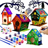 4 Pack hapray Bird House Kit, DIY Birdhouse Kits, Wooden Crafts Arts for Children to Build and Paint (Includes Paints & Brushes) for Kids Girls Boys Toddlers
