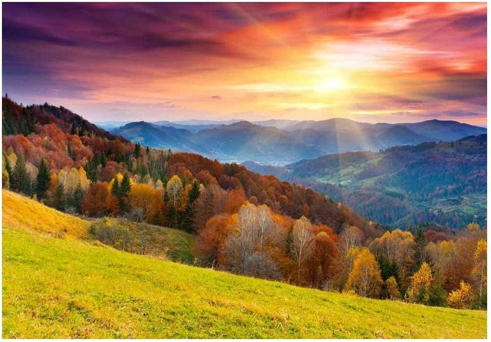 wall26 Colorful Mountain Forest in Wall Inexpensive Landscape - Autumn A surprise price is realized Mur