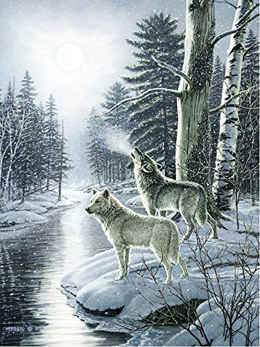 5D DIY diamante pintura Lobo diamante bordado nieve completo cuadrado mosaico punto de cruz decoración del hogar diamante pintura A6 50x70cm