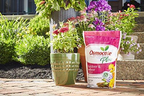 Osmocote Smart-Release Plant Food Plus Outdoor & Indoor, 8 lbs