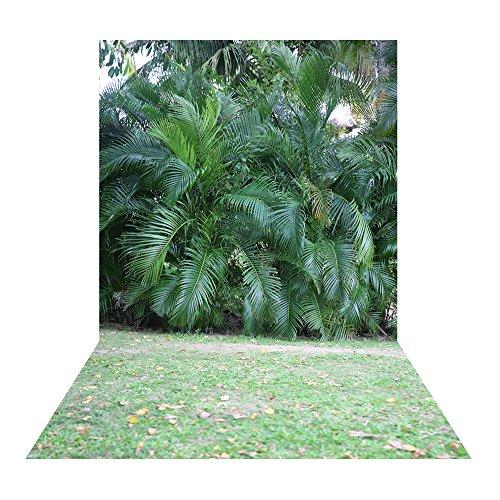 Muzi 150x250cm kokosnoot boom groene planten en weide fotografie achtergrond pasgeboren foto Studio Props XT-3419