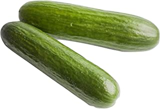 Best straight eight cucumber plant Reviews