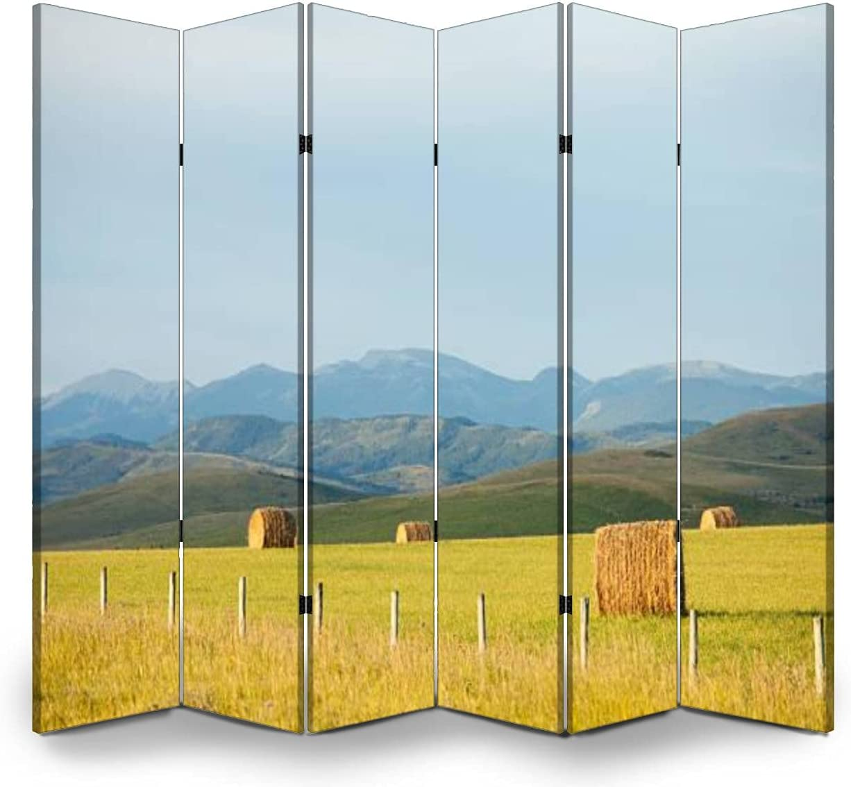 6 Panels Sales of SALE items from new works Room Divider Large discharge sale Screen Partition Rolling Foothil Beautiful