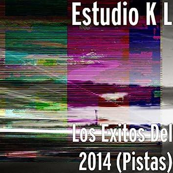 Los Exitos Del 2014 (Pistas)