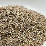 神戸アールティー ディルシード 100g Dill Seed ディル 原型 イノンド 種子 スパイス 香辛料 業務用