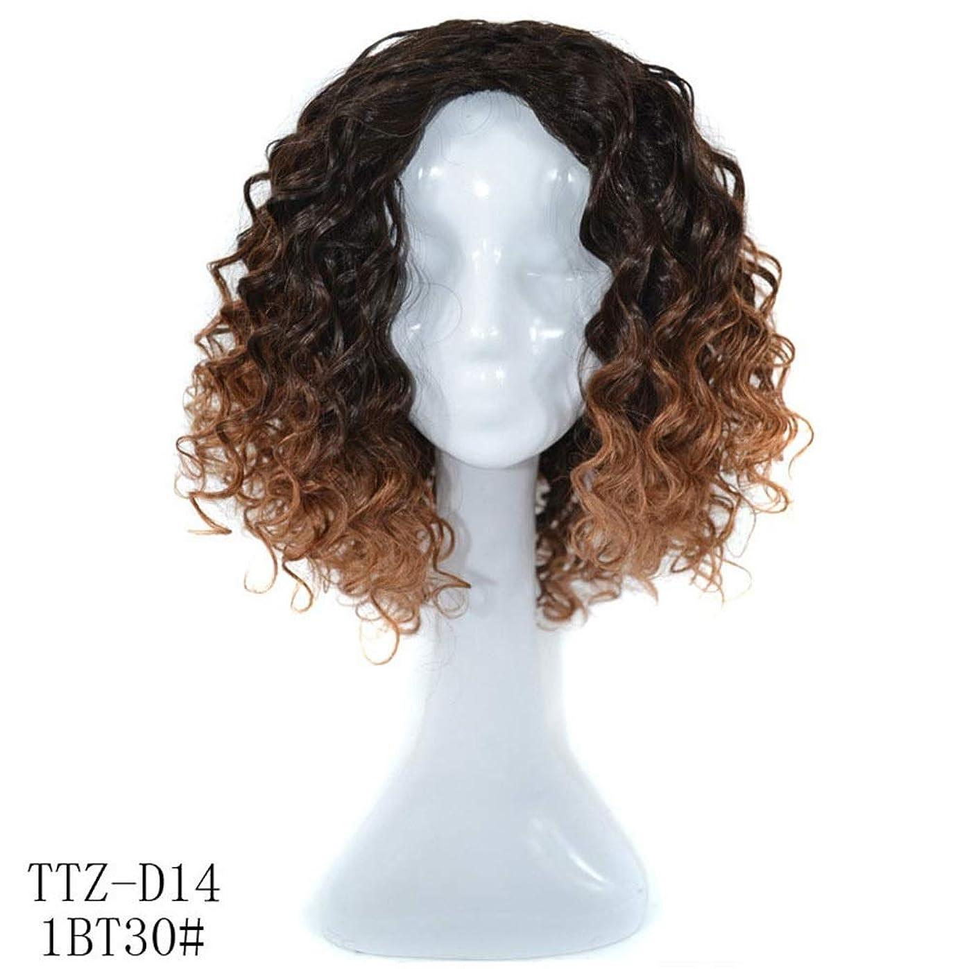 動機ルアー罰HOHYLLYA 本物の人間の髪の毛深い巻き毛の肩カール女性のためのふわふわの自然なかつらパーティーかつら (色 : Dark brown)